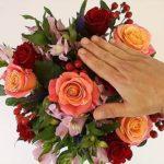 Φροντίδα Λουλουδιών