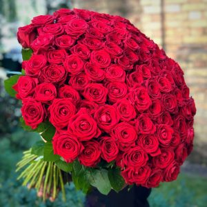 100 Red Royal Roses