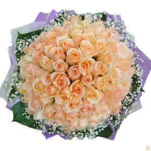 100 Pearl Roses